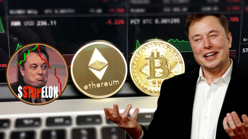 $STOPELON(New Meme Member ) – A New Cryptocurrency to ...